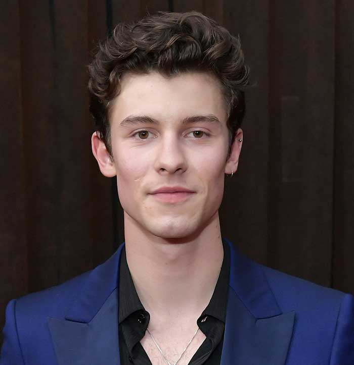 Who Is Shawn Mendes
