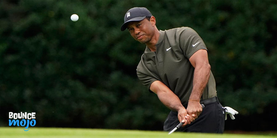 Tiger Wood Facts